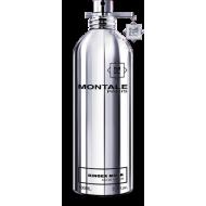 Parfémovaná voda MONTALE PARIS Ginger Musk 100ml